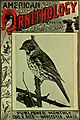 American ornithology for the home and school (1902) (14770051793).jpg