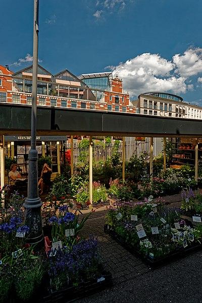 File:Amsterdam - Singel - Bloemenmarkt - Flowermarket - View NE.jpg