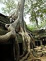 Angkor-112193.jpg