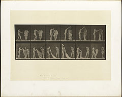 Animal locomotion. Plate 427 (Boston Public Library).jpg