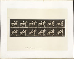 Animal locomotion. Plate 577 (Boston Public Library).jpg