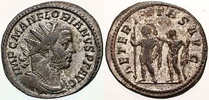Lugdunum - Antoninianus struck under Florianus in Lugdunum mint.