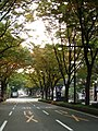 Aoba-Dori Ave 2007 b.JPG