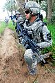 Apache Blanket covers Iraqi palm groves DVIDS273003.jpg