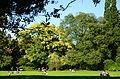 Arboretum Zürich 2013-09-21 16-31-53.JPG