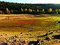 As A Small Arena - panoramio.jpg