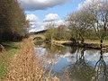 Ashby Canal - geograph.org.uk - 132739.jpg