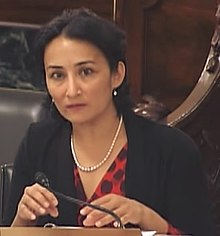 Asra Nomani at Women and Terrorism Roundtable.jpg