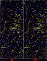 Astro 4D hyades cr 4d.png
