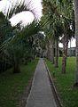 Atalaya Courtyard walkway.JPG