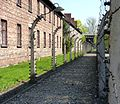 Auschwitz - Barracks and fence in the concentration camp.jpg