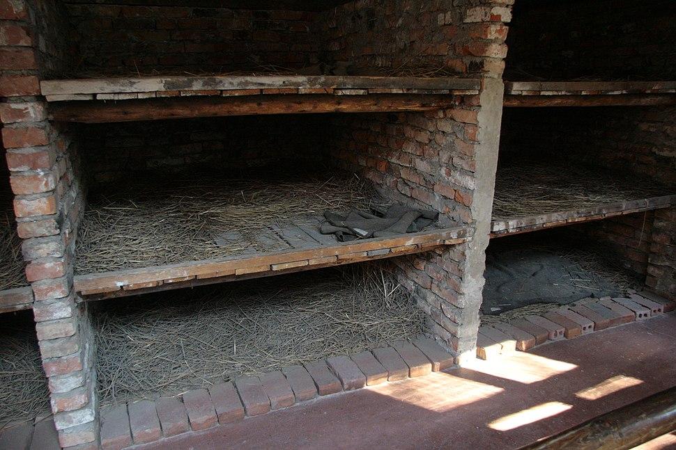 Auschwitz 1 concentration camp bunks 6006 4162