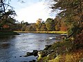 Autumn on the River Dee below Hill of Trustach - geograph.org.uk - 610895.jpg