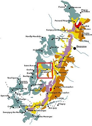 Auxey-Duresses wine - The Auxey-Duresses region (highlighted in red box) borders the Côte de Beaune wine regions of Monthelie, Meursault and Saint-Romain.
