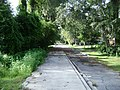 Azalea City Trail 13.jpg