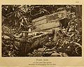 BÜTTIKOFER(1890) 1.48 River Cess, Toteninsel, Bestattungsplatz der Stammeselite.jpg