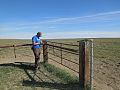 BLM Montana Improves Safety for Wildlife for National Public Lands Day (15361411765).jpg