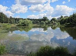 Бабаевский пруд