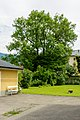 Bad Ischl Esche 3157.jpg