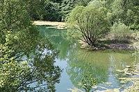 Baggersee im Naturschutzgebiet Am Ginsterpfad, Köln.JPG