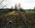 Bahnstrecke Pönitz.jpg