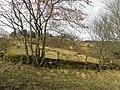 Ballybobaneen Townland - geograph.org.uk - 1770371.jpg