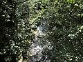 Banat,Nera Canyon - panoramio (70).jpg