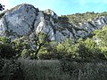 Banat, Nera Canyon - panoramio (25).jpg