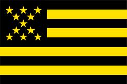 Bandera-club-atletico-penarol.png