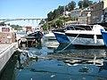 Barcos de Pesca na Afurada.JPG