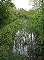 Basingstoke Canal - geograph.org.uk - 1671219.jpg