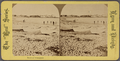 Beach at Swampscott, from Robert N. Dennis collection of stereoscopic views.png