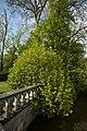 Beloeil B PM 013744.jpg