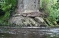 Beneath Gilnockie Bridge - geograph.org.uk - 1396080.jpg
