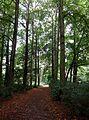 Berlin-Mahlsdorf Waldowpark 09.JPG