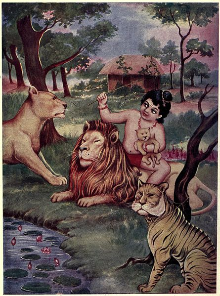 File:Bharat plays with lion cubs.jpg