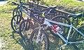 Bicajok - panoramio.jpg
