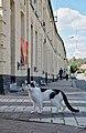 Bicolor cat residing in the Bois-du-Luc workers' housing (DSCF7921).jpg