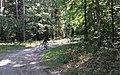 Bike trail between Grabacz and Kopaniarze - panoramio (4).jpg