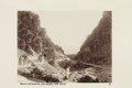 """Bild från familjen von Hallwyls resa genom Algeriet och Tunisien, 1889-1890. """"Biskra - Hallwylska museet - 91878.tif"""