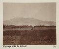 Bild från familjen von Hallwyls resa genom Egypten och Sudan, 5 november 1900 – 29 mars 1901 - Hallwylska museet - 91640.tif