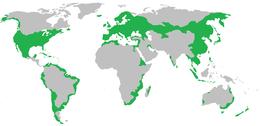 Az elterjedési területe
