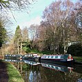 Boats and Birch Trees, near Ashwood, Staffordshire - geograph.org.uk - 661942.jpg