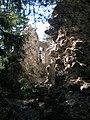 Bodenseeraum 2012 ii 121.jpg
