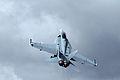 Boeing FA-18F Super Hornet 4 (4821274093).jpg