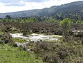 Bog pool, Glen Strathfarrar - geograph.org.uk - 446609.jpg