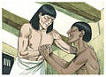 Book of Genesis Chapter 40-5 (Bible Illustrations by Sweet Media).jpg