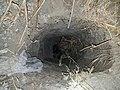 Border Patrol Arrests 30; Discover Smuggling Tunnel (36870868245).jpg