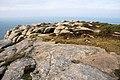 Bosigran Castle - geograph.org.uk - 1110224.jpg