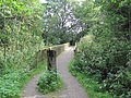 Brücke nahe Suurwisch 1.jpg